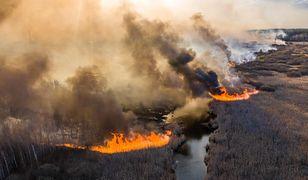 Ukraina. Pożar w Czarnobylu został ugaszony