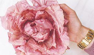 Różowa sałata wygląda jak róża!