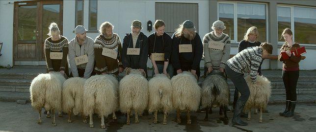"""""""Barany: Islandzka opowieść"""" to niezwykła mieszanka gatunkowa"""