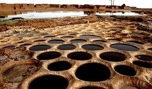 Pod Saharą kryje się ogromny zbiornik wody. Jest jak siedem Bałtyków