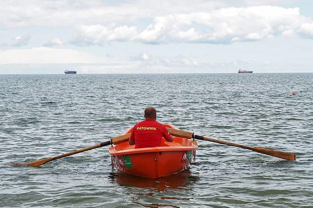 Sinice w Bałtyku