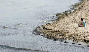 Przez sinice zamknięto cztery kąpieliska w Gdańsku
