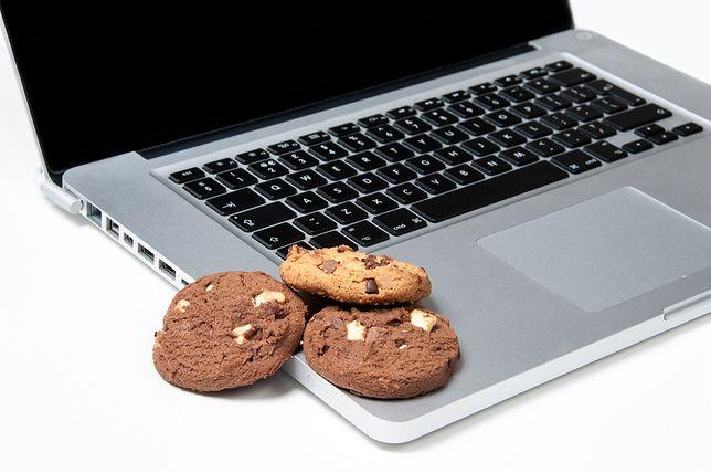 Okienka cookies są prawdziwą zmorą internetu