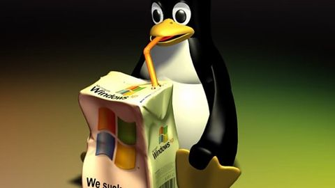 Gdyby nie piractwo, Windowsa byłoby mniej, a Linux rósłby w siłę