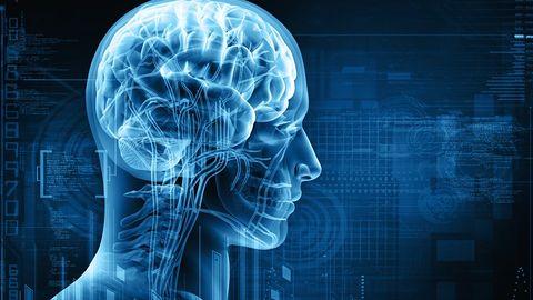 Na potrzeby multitaskingu mózg może dzielić się na niezależne ośrodki obliczeniowe