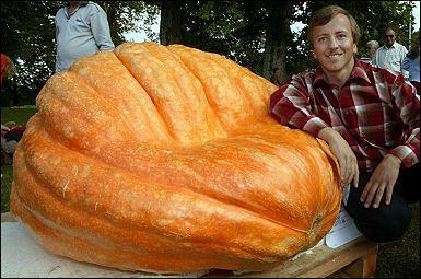 Niemiec Peter Frei prezentuje dynię, która waży 251.8 kg i jest największą dynią w Niemczech