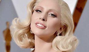 Lady Gaga stała się inspiracją dla naukowców. Nazwali owada jej imieniem