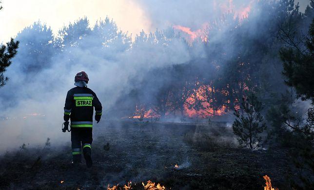 Wielkanoc 2019. Bilans interwencji straży pożarnej