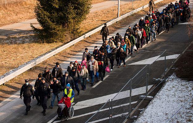 Uchodźcy na granicy austriacko-słoweńskiej