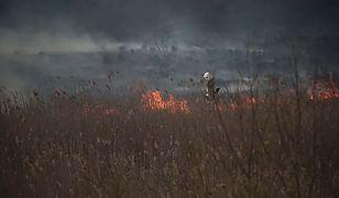 Pożar w Biebrzańskim Parku Narodowym.