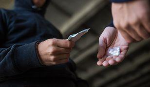 """""""Narkotyki były, są i będą"""" - twierdzi Piotr Tubelewicz ze Społecznej Inicjatywy Narkopolityki"""