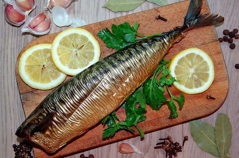 Makrela atlantycka