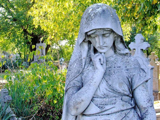 cmentarz,pomnik