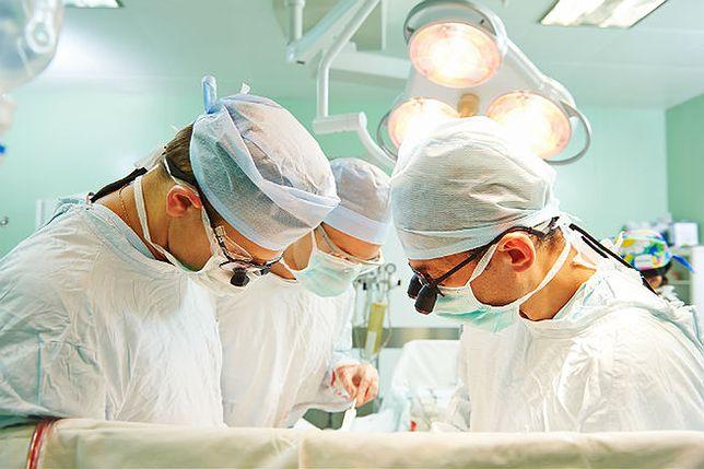 Pionierska operacja w Piekarach Śląskich. Pacjentowi wstawiono więzadło od świni