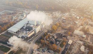 Smog atakuje nie tylko płuca. Naukowcy mówią co robić, aby chronić się przed zagrożeniem