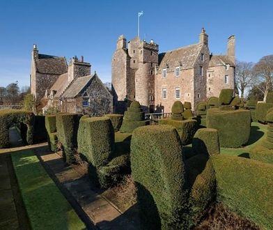 Wokół zamku jest zjawiskowy ogród. Według właścicieli trawnik ma 125 lat