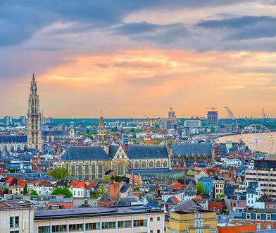 Antwerpia - najcenniejsze miasto w Europie. Jakie są największe atrakcje i co koniecznie trzeba zobaczyć w Antwerpii?