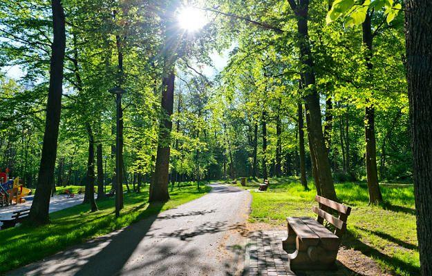 Co dalej z gdyńskim parkiem przy ul. Piłsudskiego?