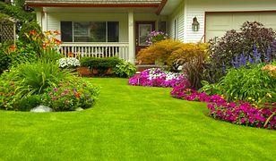 Piękny trawnik w jeden dzień: trawa z rolki