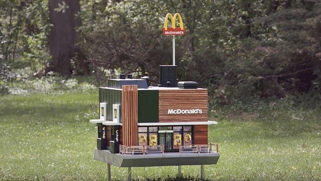 Najmniejszy fast food na świecie! McDonald's dla pszczół