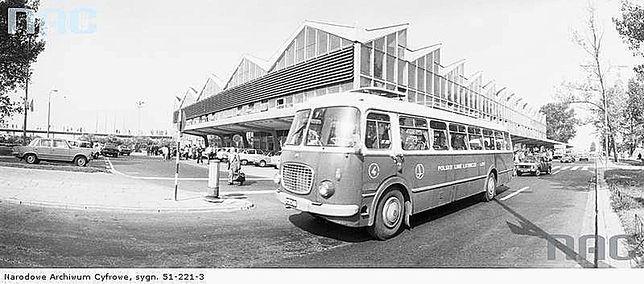 Warszawskie autobusy dawniej [ZDJĘCIA]