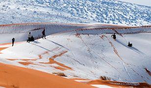 Śnieg na Saharze? Nie tylko. Zieleń również tam gościła