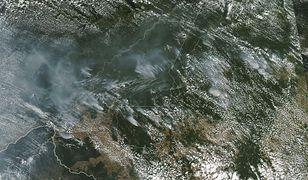 Czy to już koniec świata? Zdjęcie pożaru Amazonii zrobione z kosmosu