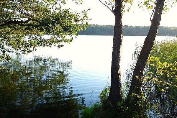 Poznaniacy popłyną przez jezioro, żeby zaprotestować przeciwko zanieczyszczaniu wody