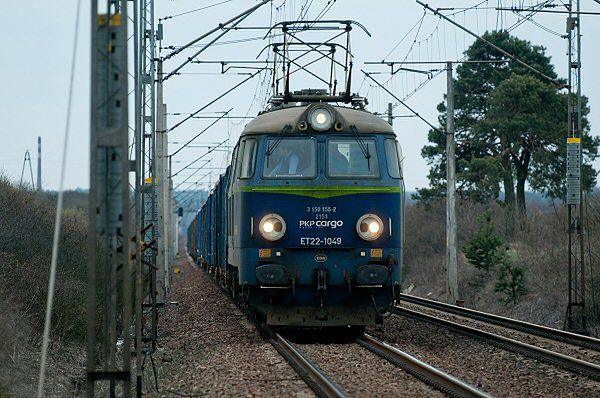 Zatrzymany pociąg na odcinku między Piotrkowem Trybunalskim a stacją Baby