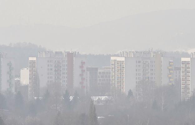 Smog w Rybniku. Zajęcia w szkołach zostaną wznowione w czwartek