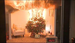 Wysuszona choinka może całkowicie spłonąć nawet w pół minuty