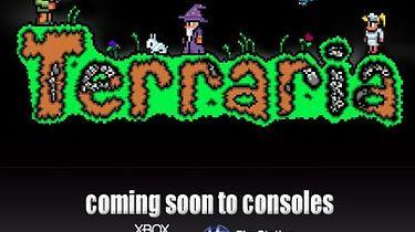 Twórca Terrarii tłumaczy wściekłym fanom, że nie ma nic wspólnego z wersją konsolową