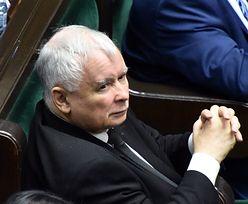 Bielan ujawnia tajemnicę Jarosława Kaczyńskiego. Prezes PiS dostaje laurki z kotami