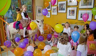 Zwierzęta coraz częściej pojawiają się na przyjęciu