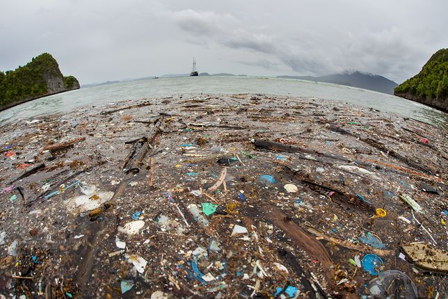 Największy problem stanowi plastik, którego nie widać gołym okiem