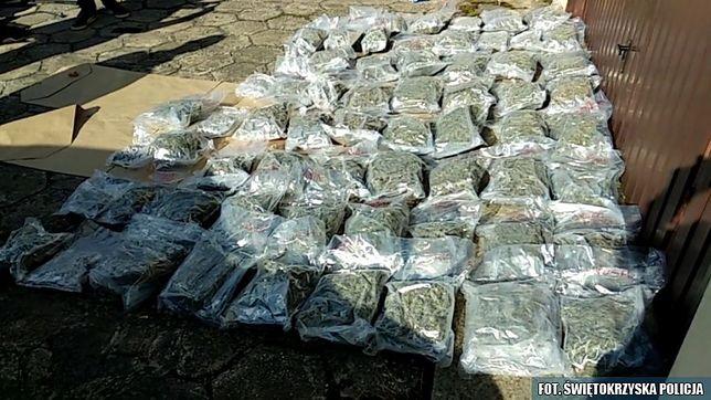 Małżeństwo z Kielc przemyciło do Polski 30 kg marihuany
