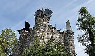 Belgia. Co jest ukryte pod wieżą Eben-Ezer?