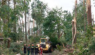 Drogi prowadzące do obozu harcerskiego były zablokowane zwalonymi drzewami.