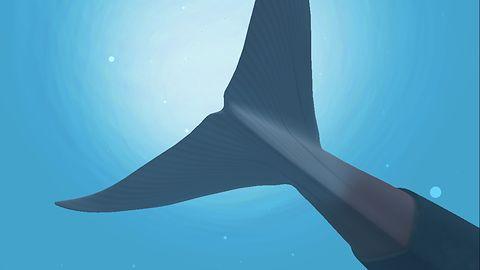 Niebieski wieloryb nie zabija nastolatków, ale gry mobilne owszem