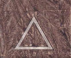 Przeglądał z nudów mapy Google. Zobaczył ten tajemniczy wielki trójkąt pośrodku niczego