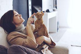 Odrobaczanie kota – kiedy i jak je przeprowadzić?