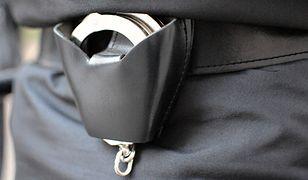 MSWiA: 28-latek z Austrii zatrzymany podczas ŚDM i wydalony