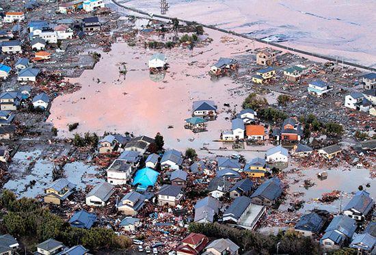 Polak w Japonii: to przerażające, wciąż przybywa ofiar!