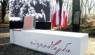 To nowa ławka niepodległości w Łazienkach Królewskich. Ale ich wygląda szybko się zmienia