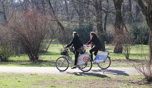 Lubisz jeździć na rowerze? Sprawdź, jak dobrze znasz przepisy