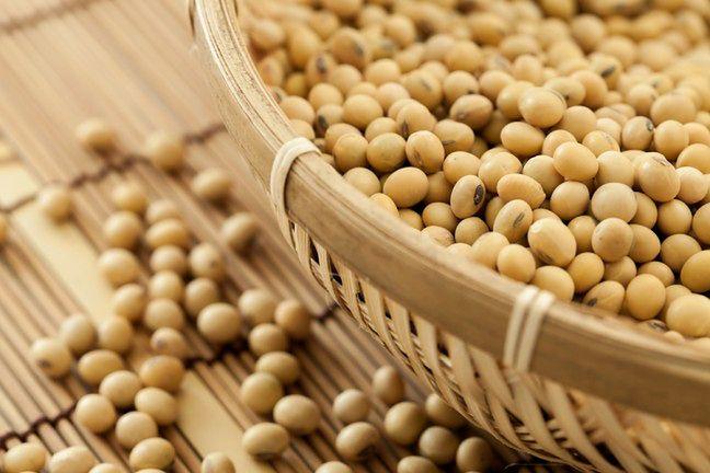 Soja to główny składnik we współczesnej hodowli zwierząt