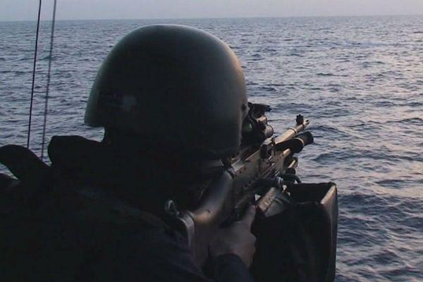 Szwedzkie Siły Zbrojne
