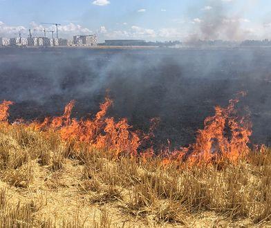Pożar we Wrocławiu