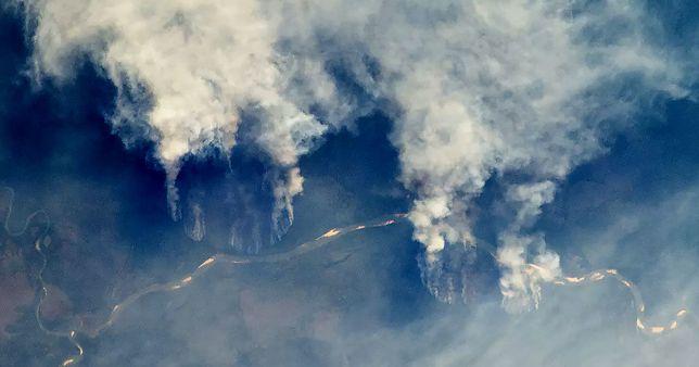 Pożar w Amazonii