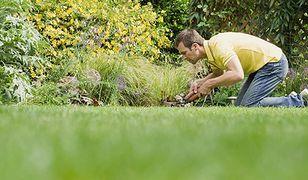 Ogrodnictwo dobrze wpływa na erekcję!